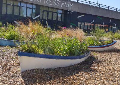 Royal Docks Waterside Garden